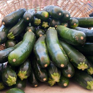 How to Freeze Fresh Zucchini or Summer Squash   www.deliciousobsessions.com