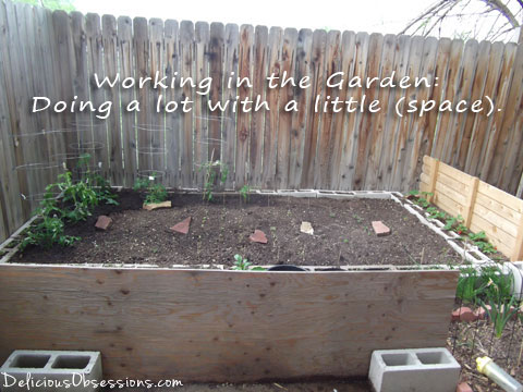 Working in the Garden - Doing A Lot With Limited Space | deliciousobsessions.com