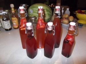 kombucha, kombucha tea, bottle kombucha, flavored kombucha