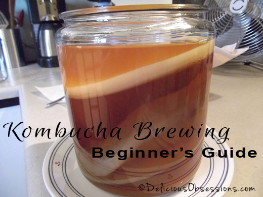 How to Make Kombucha - A Beginner's Guide // deliciousobsessions.com