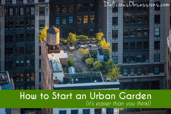 The Basics of Getting Your Urban Garden Started :: Guest Post by Mike Lieberman