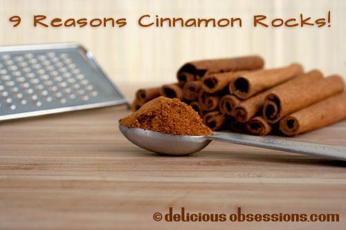 My Love Affair With Saigon (Vietnamese) Cinnamon and 9 Reasons Cinnamon Rocks!