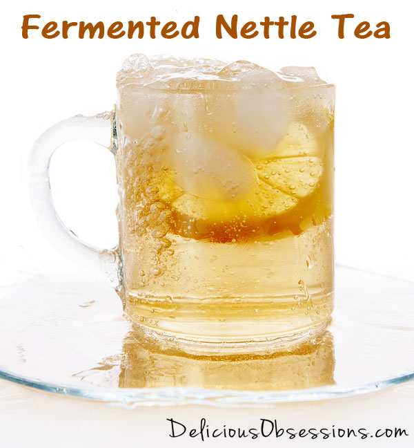 52 Weeks of Bad A** Bacteria – Week 17 – Fermented Nettle Tea