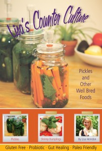 Lisa's Counter Culture Lactofermenting Book from www.lisascounterculture.com