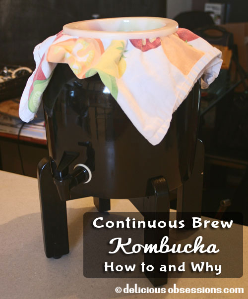 Continuous Kombucha Brewing: How To and Why