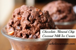Chocolate-Chip-Almond-Ice-Cream-New-Wmk-e1367670615604
