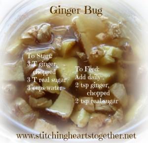 Ginger-Bug-300x289