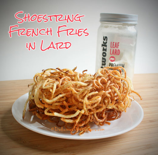 Shoestring French Fries in Lard and Healthy Fats Review | deliciousobsessions.com