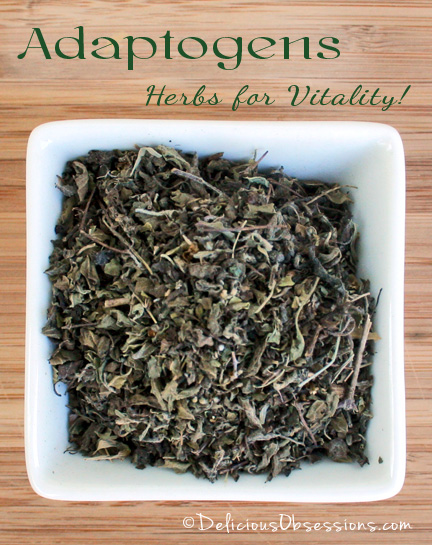 Adaptogens: Herbs for Vitality - Holy Basil | deliciousobsessions.com