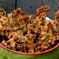 Copycat Recipe: Rhythm's Zesty Nacho Kale Chips