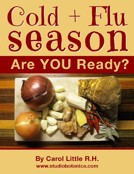 Cold + Flu Season ~ Are YOU Ready? eBook Review // deliciousobsessions.com
