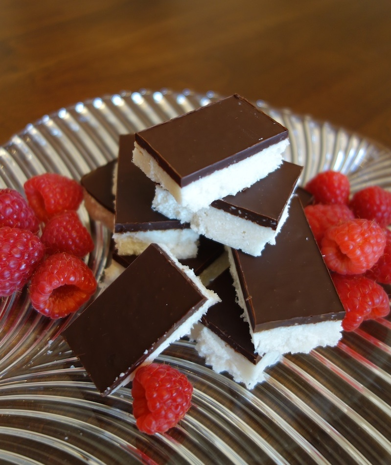 Dark Chocolate Coconut Bars (gluten, grain, dairy free, paleo)