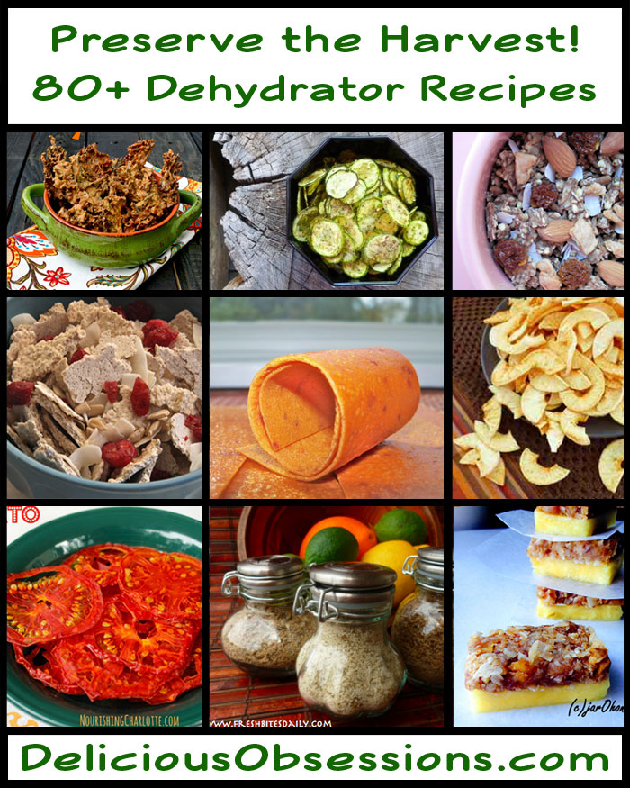 80 dehydrator recipes to preserve the harvest forumfinder Choice Image