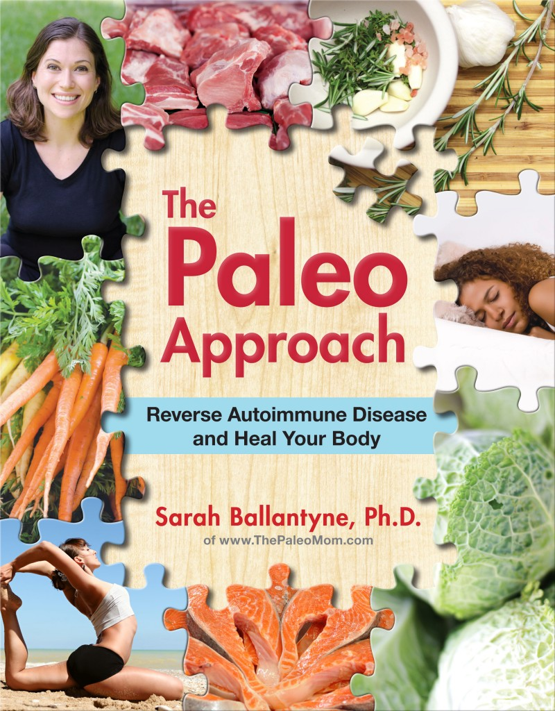 The Paleo Approach: Reverse Autoimmune Disease and Heal Your Body Book Review // deliciousobsessions.com