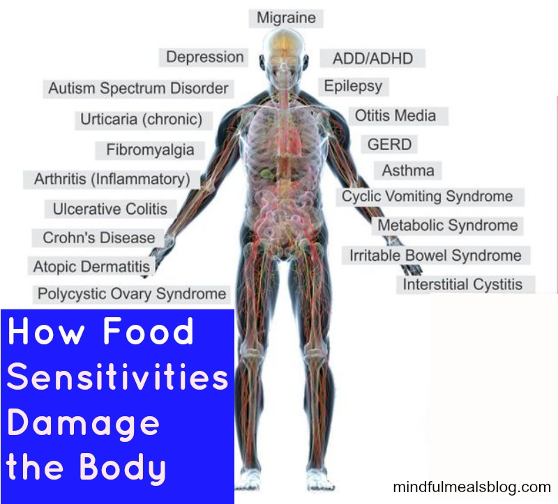 Suffer From Food Sensitivities? Read This. // deliciousobsessions.com