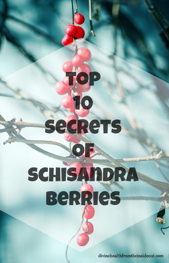 Top 10 Secrets of Schisandra Berries {+RECIPES}