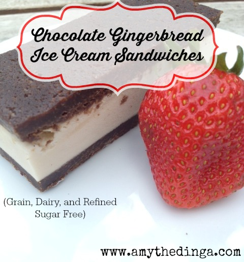 Chocolate Gingerbread Ice Cream Sandwiches :: Grain and Dairy Free