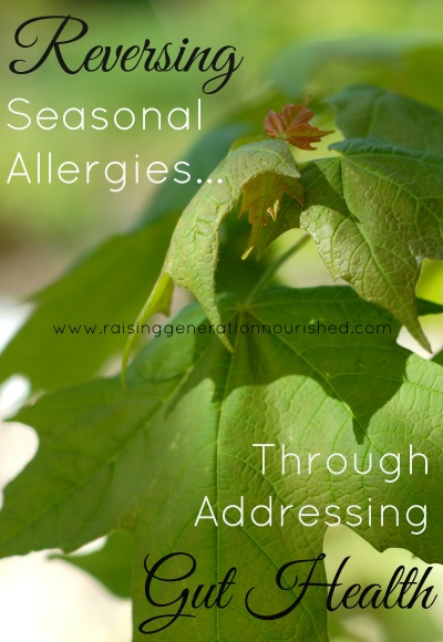 Reversing Seasonal Allergies Through Addressing Gut Health // deliciousobsessions.com