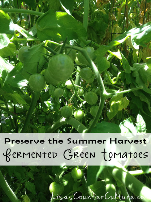 How to Make Lactofermented Green Tomatoes