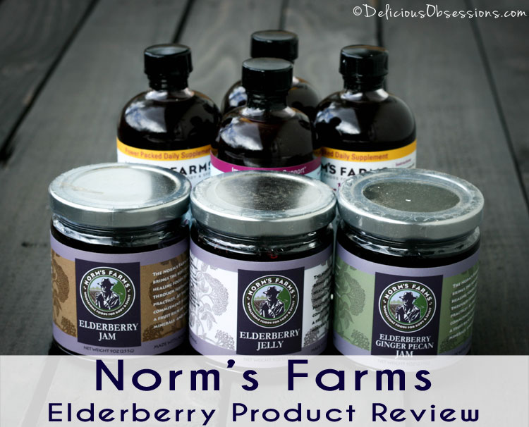 Small Purple Berry. Big Nutritional Punch. // deliciousobsessions.com
