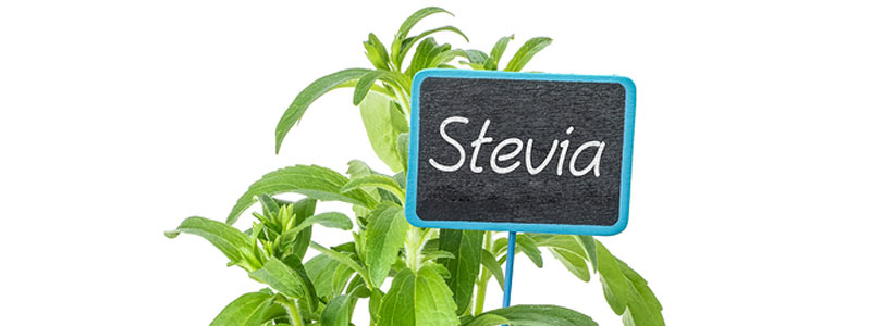 Stevia – A Natural Sweetener With Proven Health Benefits