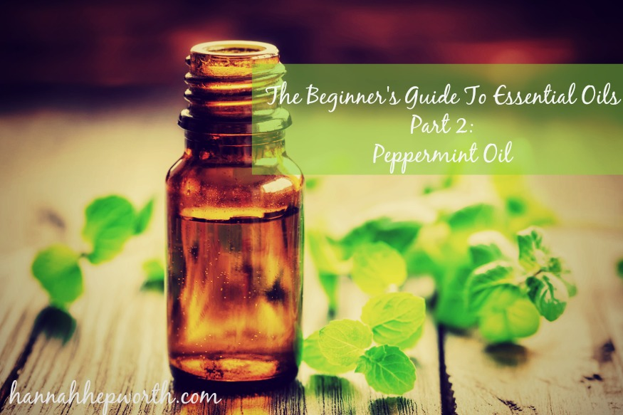 The Beginner's Guide To Essential Oils Part 2: Peppermint Oil