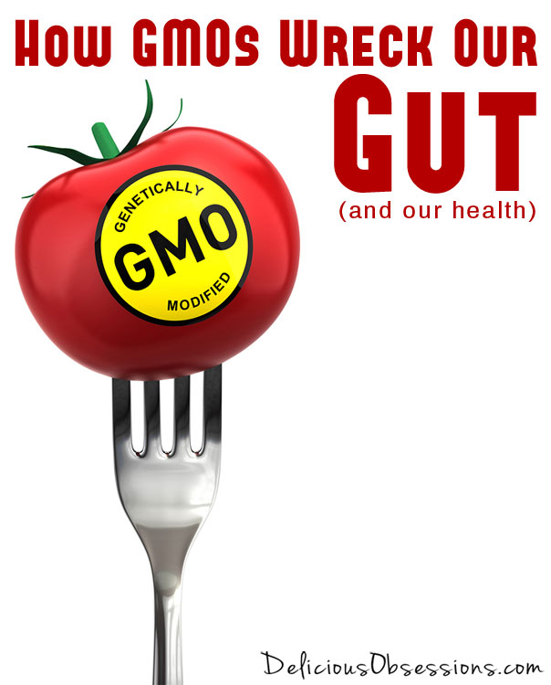 How #GMOs Wreck Our #Gut and Our Health // deliciousobsessions.com #GeneticallyModified #RealFood #FoodPolitics #Awareness #Sustainable #Agriculture
