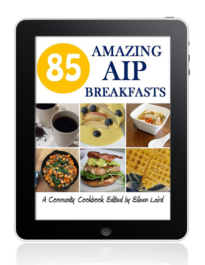 85 Amazing AIP Breakfasts // deliciousobsessions.com