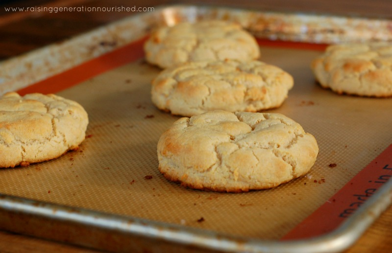 Paleo Biscuits :: Grain-Free and Gluten-Free (Perfect for breakfast, lunch, or dinner!)