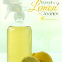 The Simplest, Refreshing Lemon Cleaner