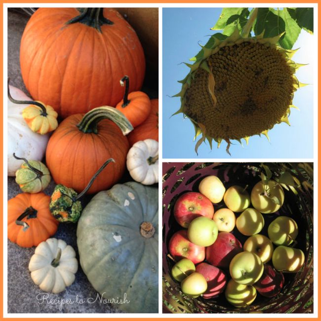 October and Fall   Delicious Obsessions