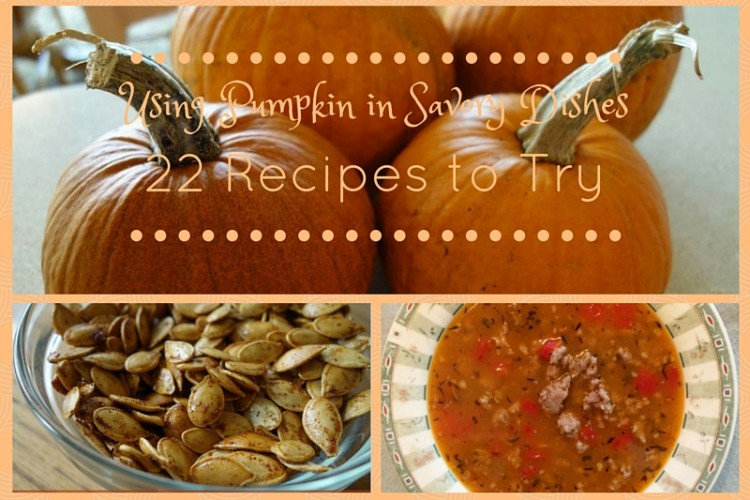 Using Pumpkin in Savory Dishes (22 Recipes to Try)