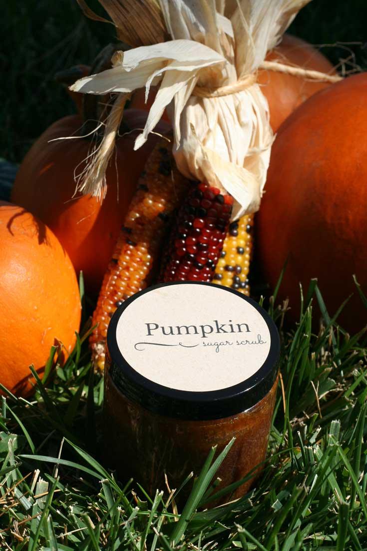 Pumpkin Sugar Scrub Recipe | DeliciousObsessions.com