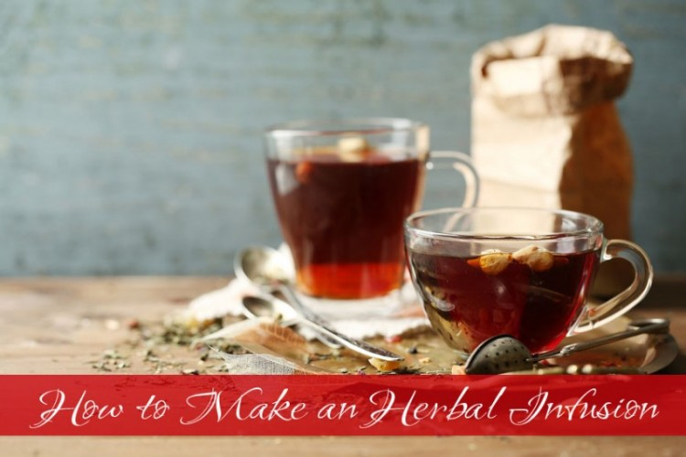 How to Make an Herbal Infusion // deliciousobsessions.com