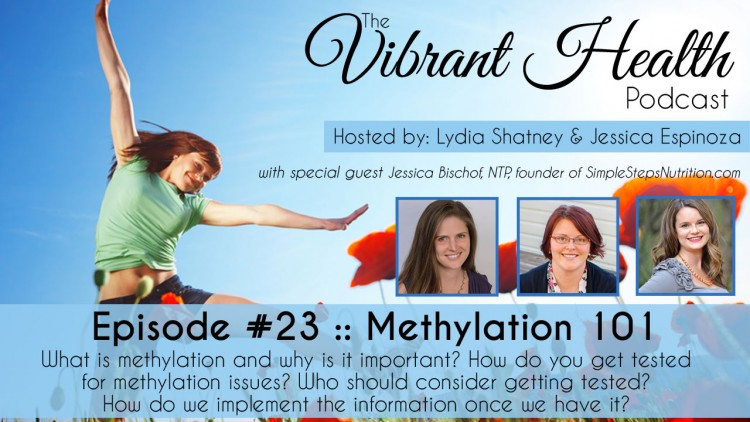 The VH Podcast, Episode 23: Methylation 101