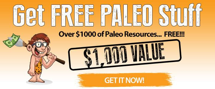 FREE Paleo Bundle (No strings attached, promise!) :) // deliciousobsessions.com