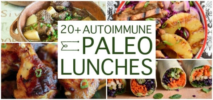 20+ Delicious AIP Lunches