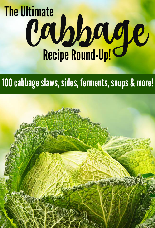 The Ultimate Cabbage Recipe Guide :: 100 Cabbage Recipe Ideas! // deliciousobsessions.com