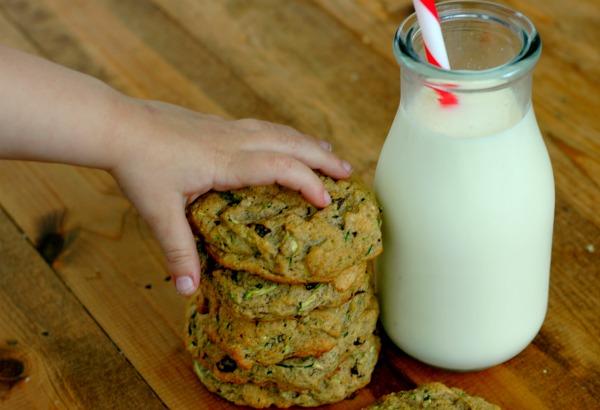 http://www.raisinggenerationnourished.com/2014/08/cinnamon-raisin-zucchini-muffins-gluten-egg-nut-dairy-refined-sugar-free/