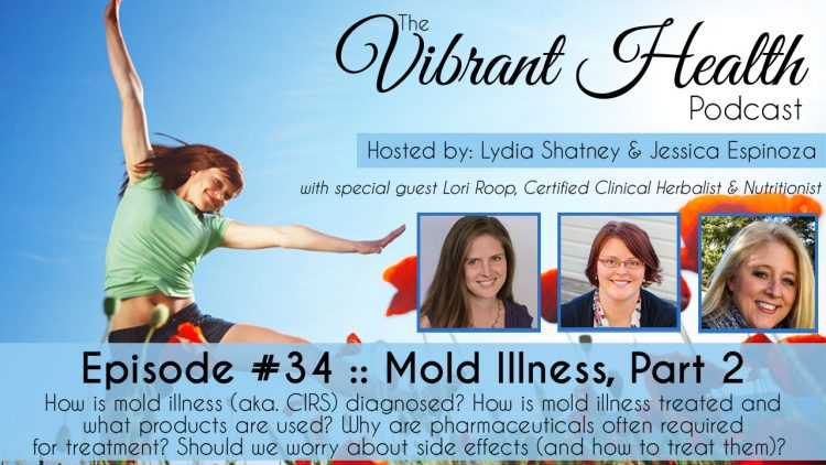 The VH Podcast, Episode 34: Mold Illness 201