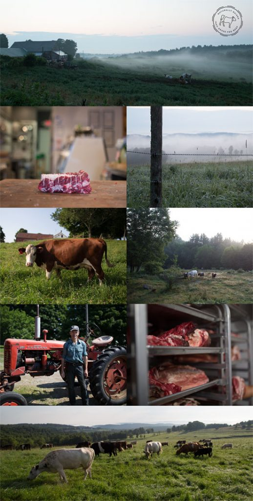 5 Tips for Sourcing Affordable Grass-Fed Meats // deliciousobsessions.com