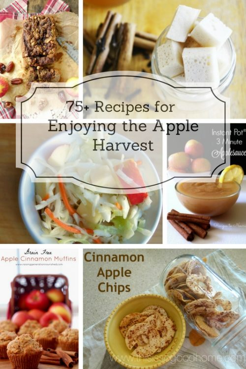 75+ Recipes for Enjoying the Apple Harvest! All recipes are gluten-free and include everything from sweet treats to savory dishes! // deliciousobsessions.com