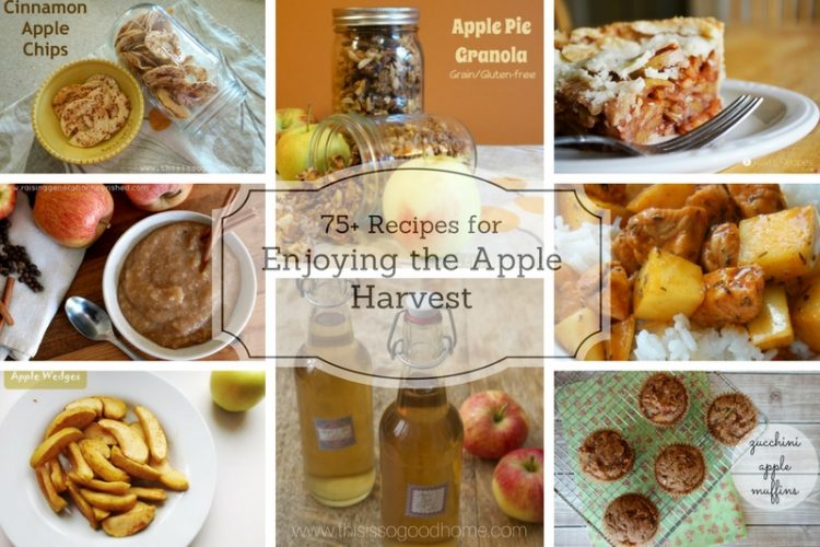 75+ Real Food Recipes for Apples: Enjoy the Harvest!