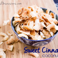 Sweet Cinnamon Coconut Chips :: Gluten, Grain, Dairy, and Refined Sugar Free