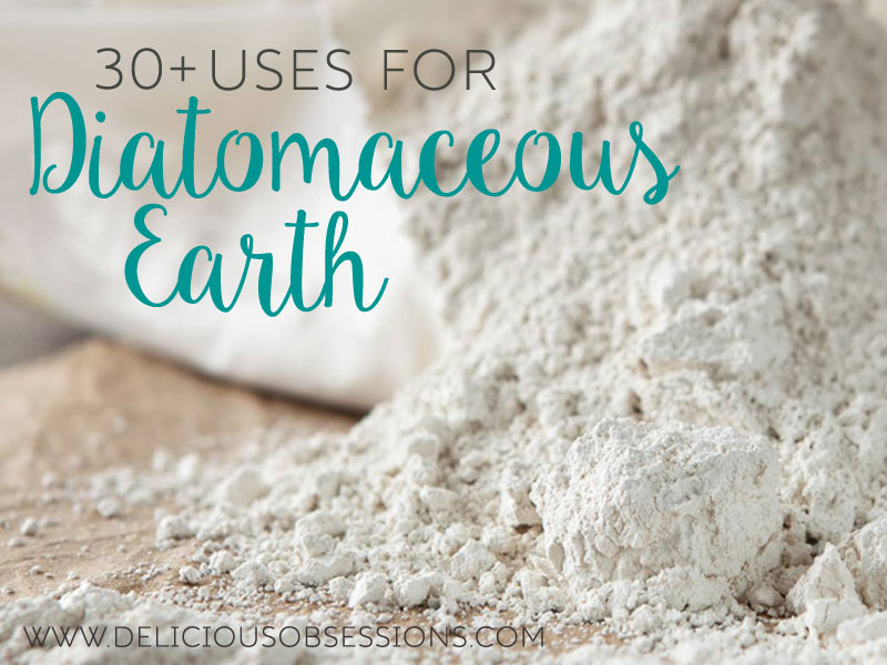 30+ Uses For Diatomaceous Earth