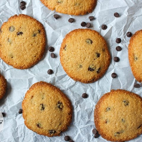 Chewy Gluten-Free Chocolate Chip Cookies :: Grain-Free, Refined Sugar Free, Dairy-Free Option