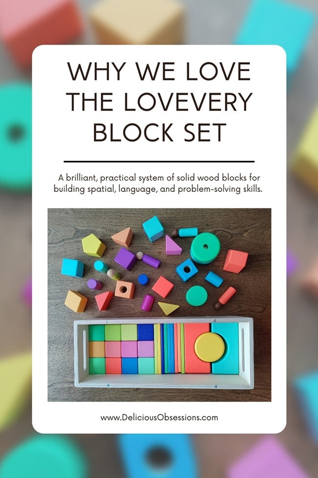 5 Reasons Why Building Blocks Are Good for Toddler Development // deliciousobsessions.com